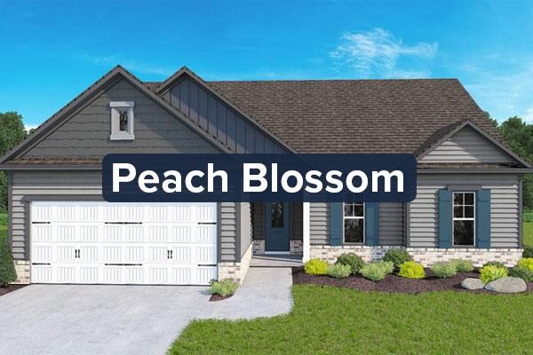 Peach-BlossomCTA.jpg