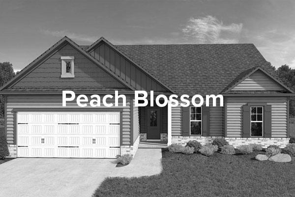 Peach-BlossomHover.jpg